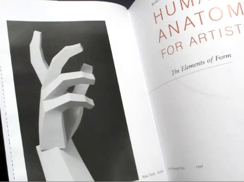 human anatomy for artists the elements of form pdf