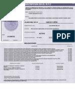 cedula de identificacion fiscal pdf