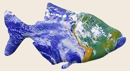 diana walstad ecology of the planted aquarium pdf