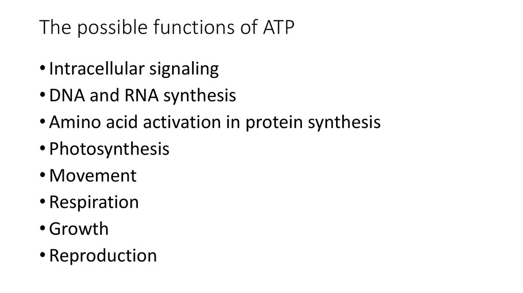 explain the structure and function of the mitochondria pdf